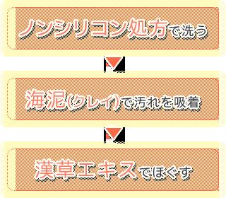 ノンシリコン処方で洗う→海泥(クレイ)で汚れを吸着除去→漢草エキスでほぐす